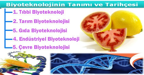 Biyoteknolojinin tanımı ve tarihçesi
