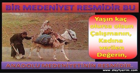 Anadolu Medeniyetinin Resmi