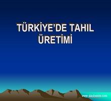 Türkiye de tahıl üretimi