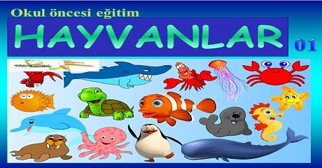 Hayvanlar 01 - Okul öncesi eğitim