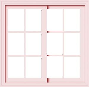 Window Picture