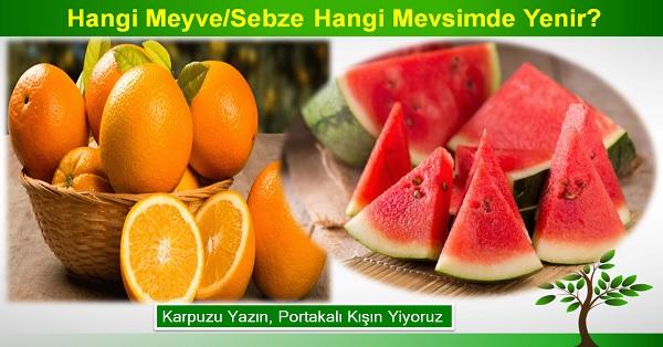 Hangi meyve / sebze hangi mevsimde yenir