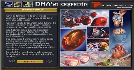 DNA yı keşfedin
