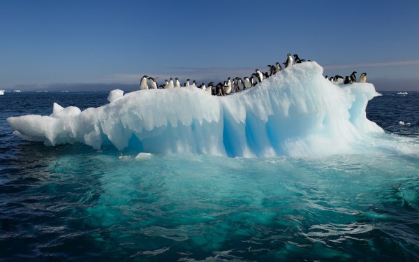 Landscape from Antarctica