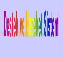 Destek ve Hareket Sistemi 2