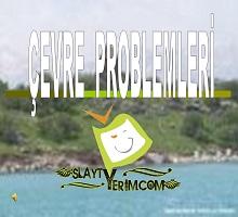 Çevre Problemleri