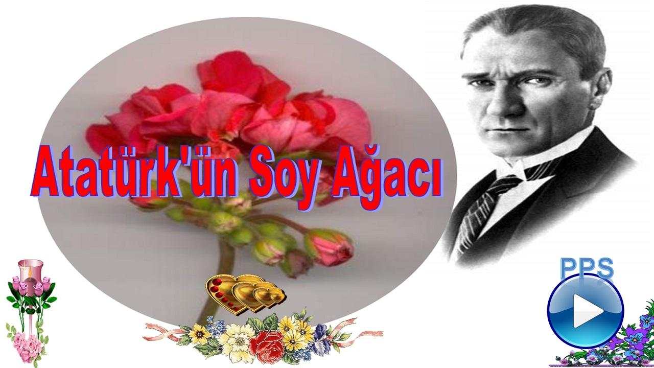 Atatürk ün soy ağacı