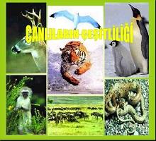 Canlıların çeşitliliği