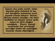 Sigmund Freud dan muhteşem alıntılar