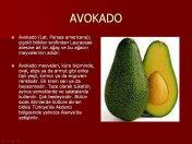 Meyve Ansiklopedisi