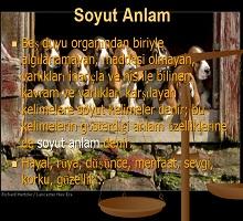 Soyut Somut Anlam
