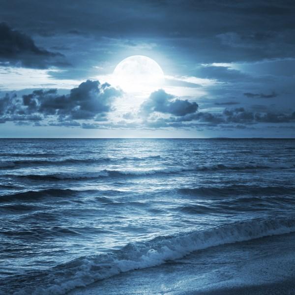 Moonlight Landscape