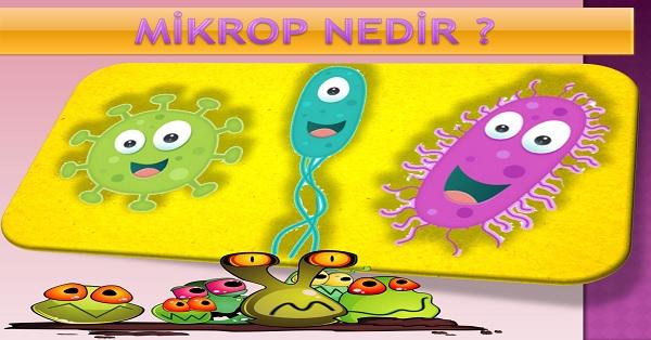 Mikrop Nedir ?