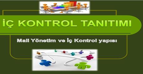 İç kontrol tanıtımı