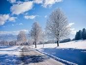 Kış manzaraları