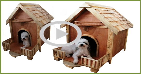 Köpek kulübesi yapımı / KENDİN YAP