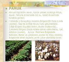 Türkiye de Tarım