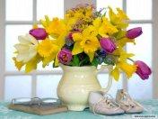 Çiçeklerin dünyası